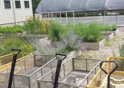 tunnel garden 5